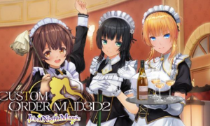 Custom Order Maid 3D 2 PC Latest Version Game Free Download