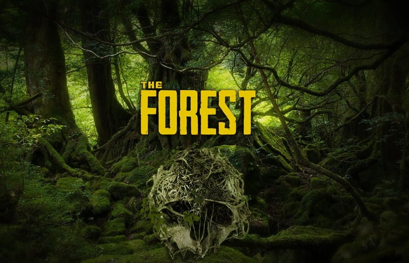 The Forest iOS/APK Full Version Free Download