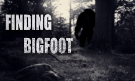 Finding Bigfoot iOS/APK Full Version Free Download