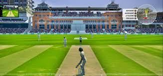Cricket 19 zaxrow